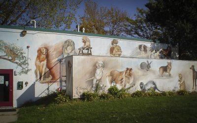 murals-42